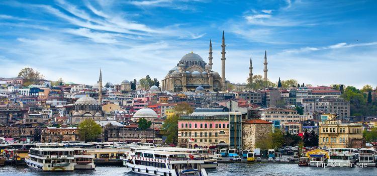 トルコの期待値の高さ